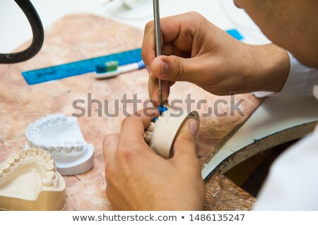 make denture plaster model Stock photo © Bunwit