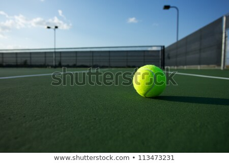 Tennis Court Net with the Court Beyond Stock photo © 33ft