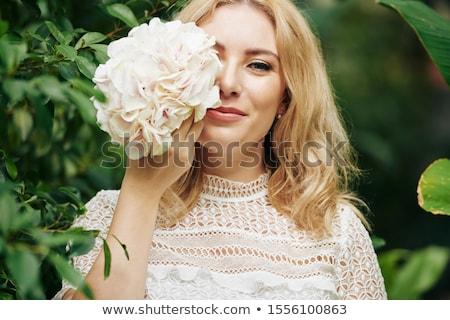 Blumen · Blume · gelb · Büsche · Himmel - stock foto © julietphotography