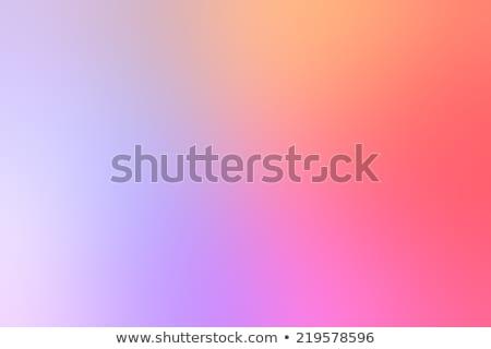 Kleur spectrum Blur wazig horizon regenboog Stockfoto © ArenaCreative