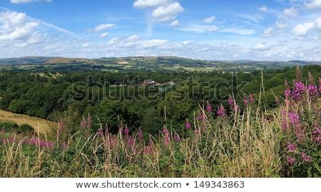 Acima lago panorama país de gales Foto stock © latent