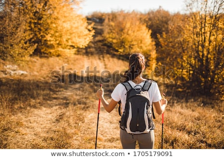 nordic walking in forest Stock photo © val_th