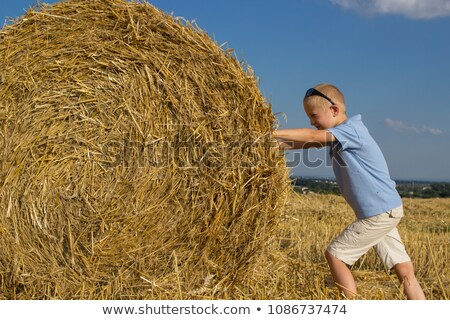 casual man outdoor pushes a haystack stock photo © feedough
