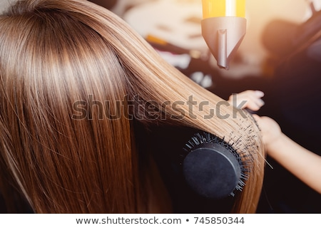 Beautiful girl blow drying hair Stock photo © Khalima