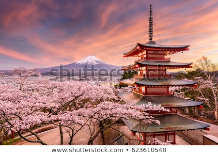 fuji · nascer · do · sol · lago · manhã · outono · neve - foto stock © leungchopan