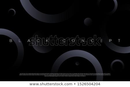 Exkluzív arany iránytű tű fekete mező Stock fotó © tashatuvango