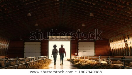 Woman in the dark rural barn Stock photo © Novic