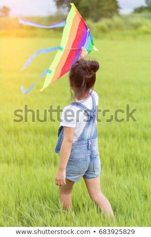 счастливым · детей · играет · Flying · кайт · лет - Сток-фото © monkey_business