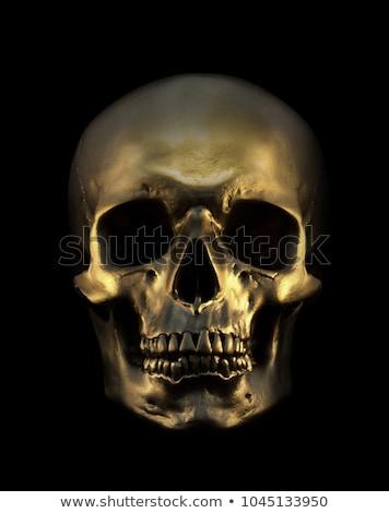 черный череп темно Гранж вектора улыбка Сток-фото © muuraa