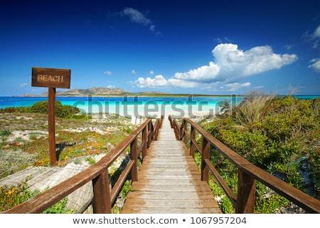 Pelosa beach, Sardinia, Italy. Stock photo © kasto