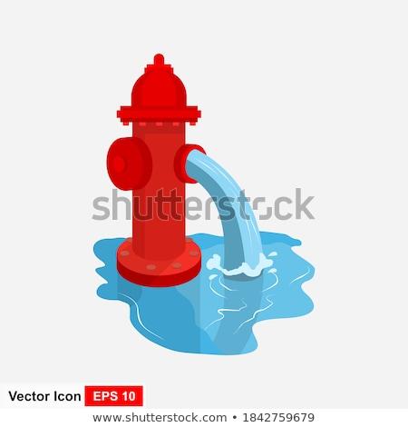iron, red fire hydrant  Stock photo © OleksandrO