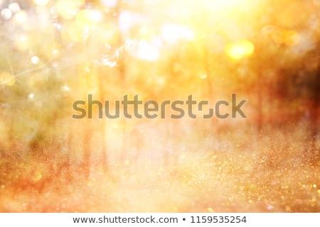 Thanksgiving Autumn Fall background Stock photo © Irisangel