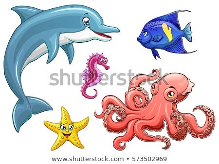 spineless starfish stock photo © acidfox