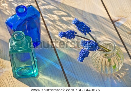 Still life grape hyacinths bottle blue flower Stock photo © fotoaloja