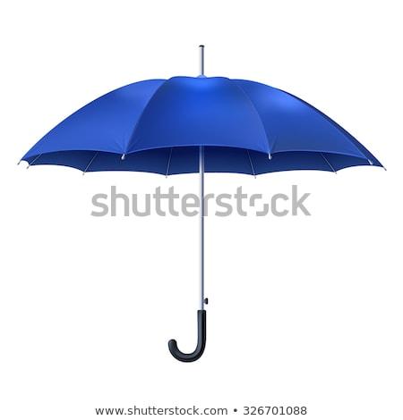 Umbrella blue Vector Icon Design Stock photo © rizwanali3d