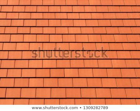 vierkante · dak · tegels · klei · patroon · verweerde - stockfoto © lunamarina
