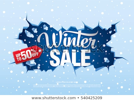 Winter Sale Sign Stock photo © Lightsource