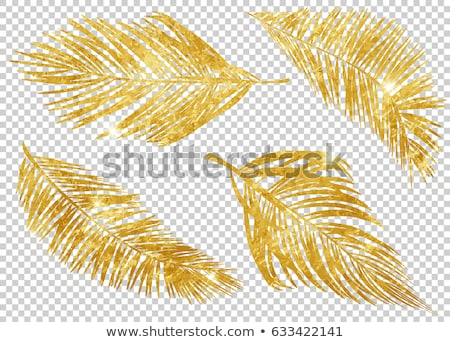 Goud voorjaar zomer eps 10 elegante Stockfoto © beholdereye