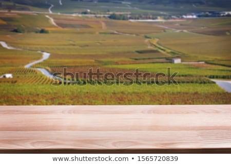 Stock photo: Wine Montage
