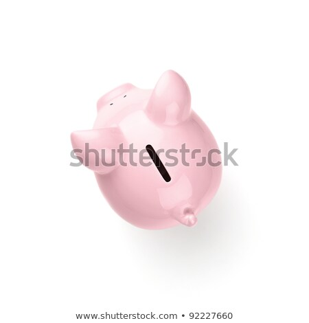 Back view of piggy bank Stock photo © cherezoff
