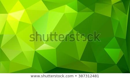 vector green polygonal background  stock photo © Natali_Brill