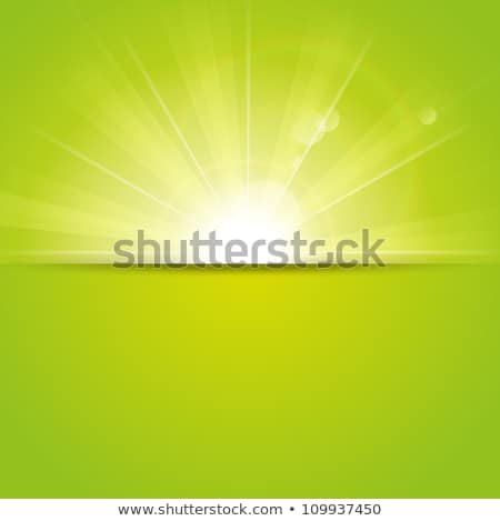 Zonnestralen groene abstract eps 10 hemel Stockfoto © fresh_5265954