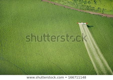 Vliegtuig meststof vliegtuig grond bos landschap Stockfoto © Hofmeester