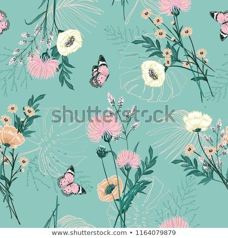ensemble · insectes · jardin · de · fleurs · fleurs · fond · été - photo stock © bluering