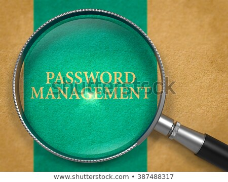 Kennwort Management Linse Altpapier blau vertikalen Stock foto © tashatuvango