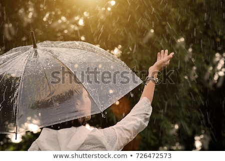 Dame regenachtig dag illustratie paraplu natuur Stockfoto © get4net