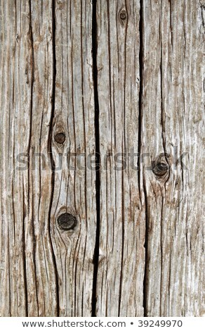 Weathered wooden sea wall girder close up. Stock photo © latent
