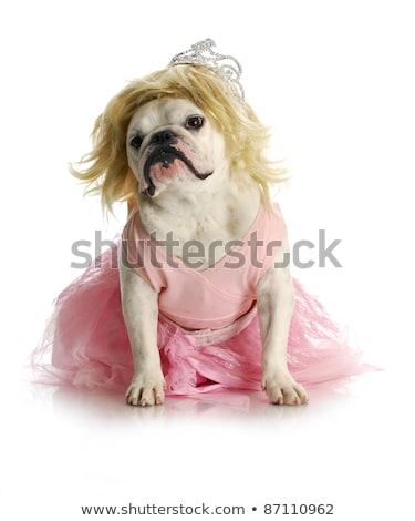 Foto stock: Menina · coroa · para · cima · rainha · criança