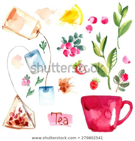 Aquarel theepot huis koffie home Stockfoto © gladiolus