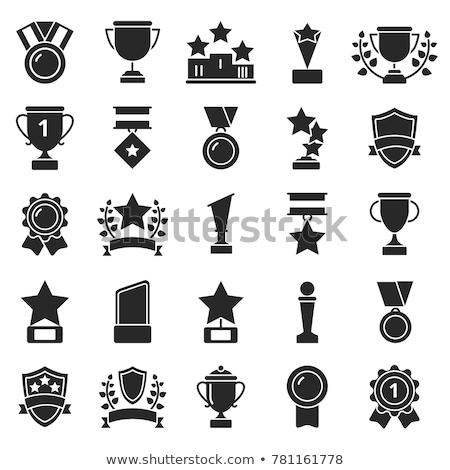 troféu · ícone · diferente · estilo · cor · vetor - foto stock © sidmay
