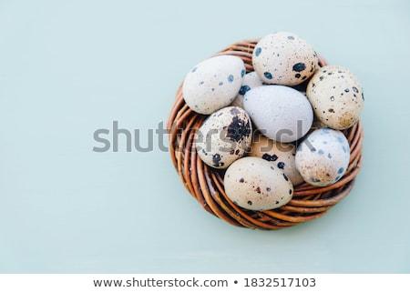 イースター 卵 巣 カラフル 白 チューリップ ストックフォト © Melnyk