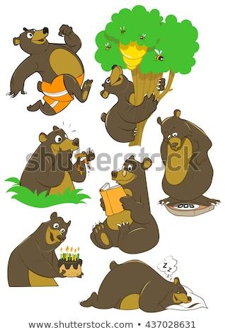 Bear sleep isolated. Wild beast sleep. Vector illustration Stock photo © MaryValery