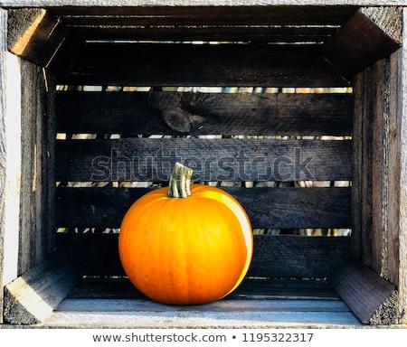 Narancs fából készült friss sütőtök bent láda Stock fotó © dash