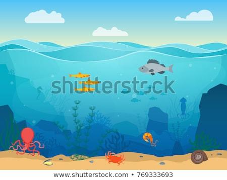vízalatti · tenger · élet · illusztráció · tengeralattjáró · búvárkodik - stock fotó © dejanj01