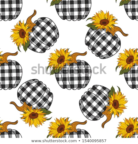 Seamless pattern with pumpkin on the white background stock photo © TasiPas