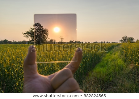 Neutral density photographic filter Stock photo © magraphics