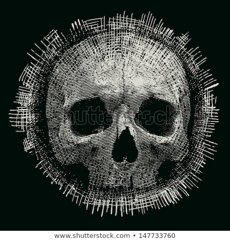 Angry skull on t-shirt Stok fotoğraf © netkov1