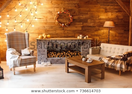 Fireplace in Room Home Interior House Atmosphere Photo stock © robuart