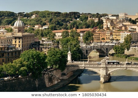 Rome rooftops and Tiber river view from above Stock photo © xbrchx