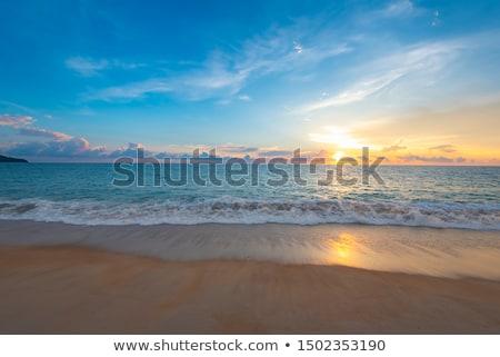 óceán · homokos · tengerpart · tájkép · trópusi · part · tenger - stock fotó © liolle