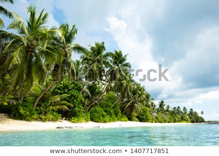 Scenic View Of Anse Marie-Loise Beach, Mahe Island, Seychelles Stock photo © AndreyPopov