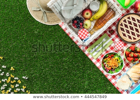 Healthy food and accessories outdoor summer or spring picnic, Pi stock photo © Freedomz