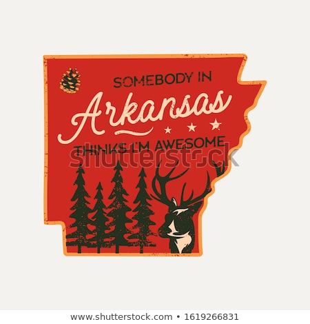 vintage arkansas badge retro style us state patch print for t shirt and other uses included quote stock photo © jeksongraphics
