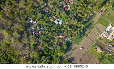 Many villas with brown-orange shingle roofs between tropical trees on the sky background in Ubud on  Stock photo © galitskaya