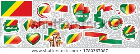 Wektora zestaw banderą Congo różny twórczej Zdjęcia stock © butenkow