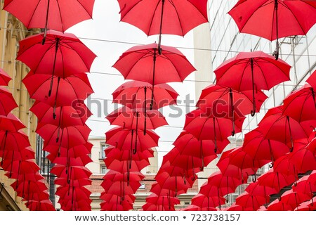 赤 傘 ベオグラード セルビア 多くの 通り ストックフォト © borisb17
